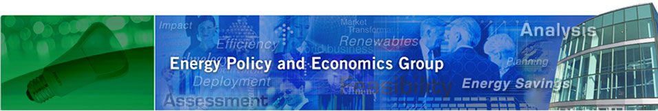 Energy Policy and Economics Group